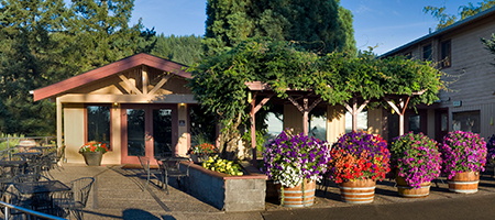 erath winery tasting room and patio