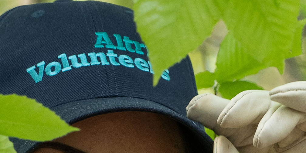 detail of altria volunteers cap and gloved hand in leaves